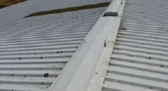 Littlehampton Sports Hall Roof Ridge